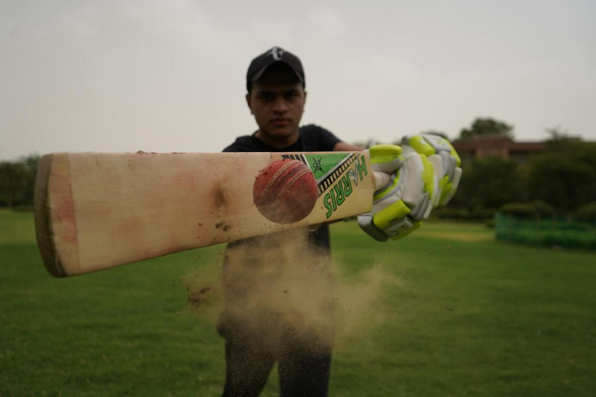 facts about cricket