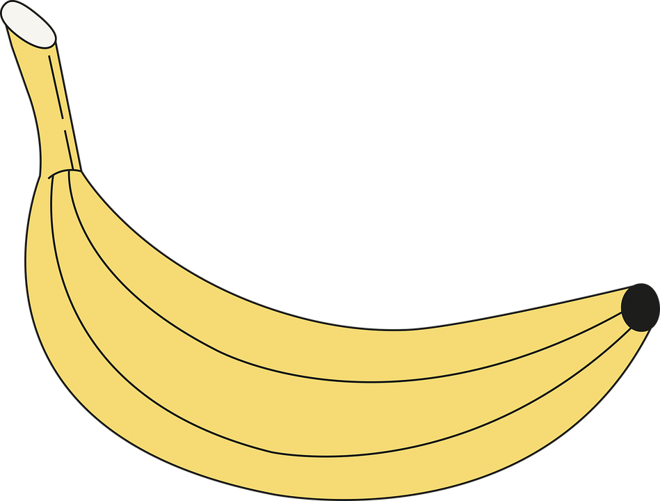 Banana Fruit Drawing Free Vector Graphic On Pixabay