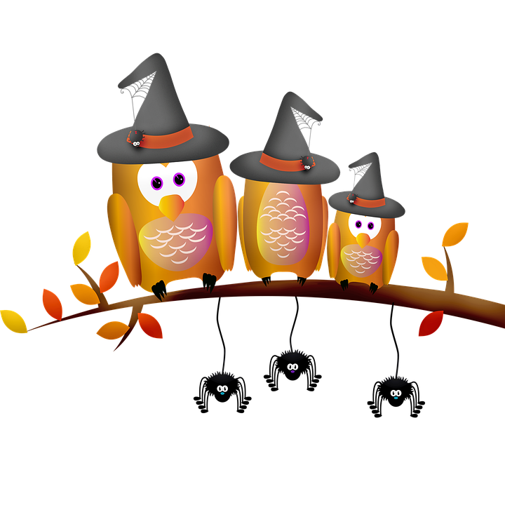Conjure up a halloween party that draws on autumn's natural splendor, punctuated with spooky touches. Halloween Decorations Owl Spiders Free Image On Pixabay
