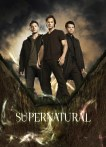 Image result for supernatural tv show