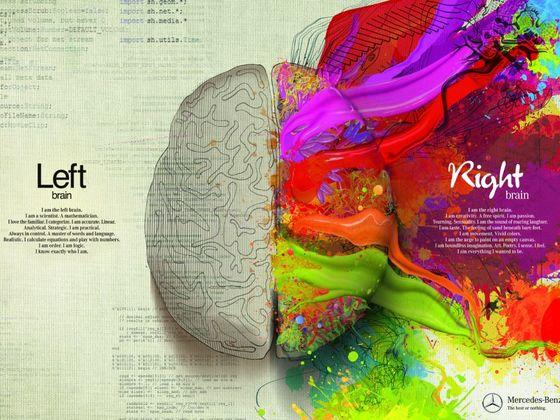 Quel Hmisphre De Votre Cerveau Est Dominant PlayBuzz