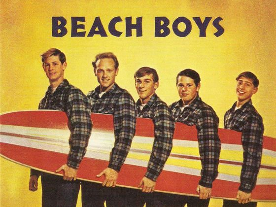 Image result for beach boys
