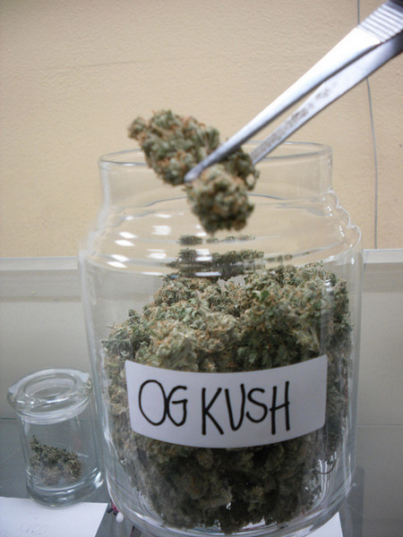 Image result for OG Kush in jar