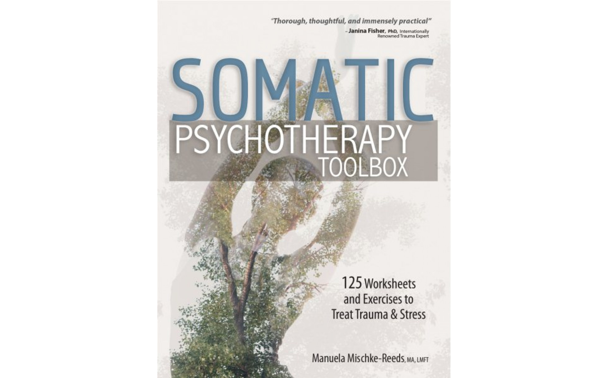 Somatic Psychotherapy Toolbox 125 Worksheets And