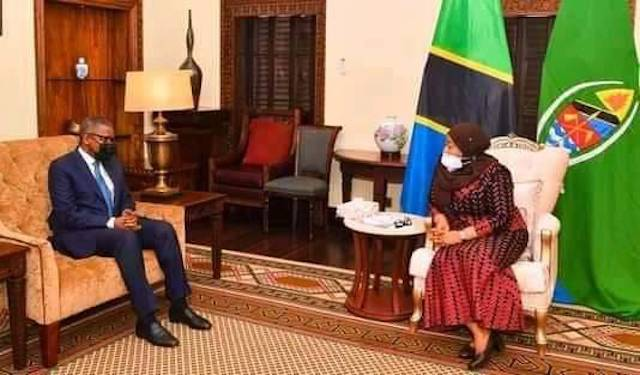 Aliko Dangote meets President Samia Suluhu Hassan of Tanzania 2