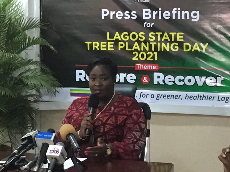 Lagos plants 7.6m trees in 10 years, targets 50,000 trees 2021