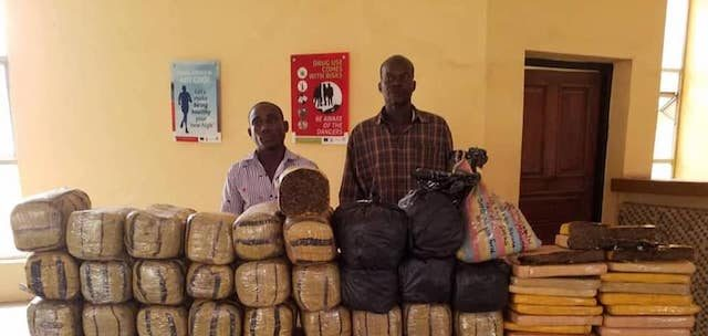 Muhammadu Garba and Shaibu Haruna arrested with cannabis sativa in Adamawa