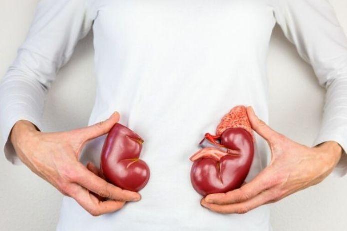 Waspadai Ini 5 Gejala Penyakit Infeksi Ginjal