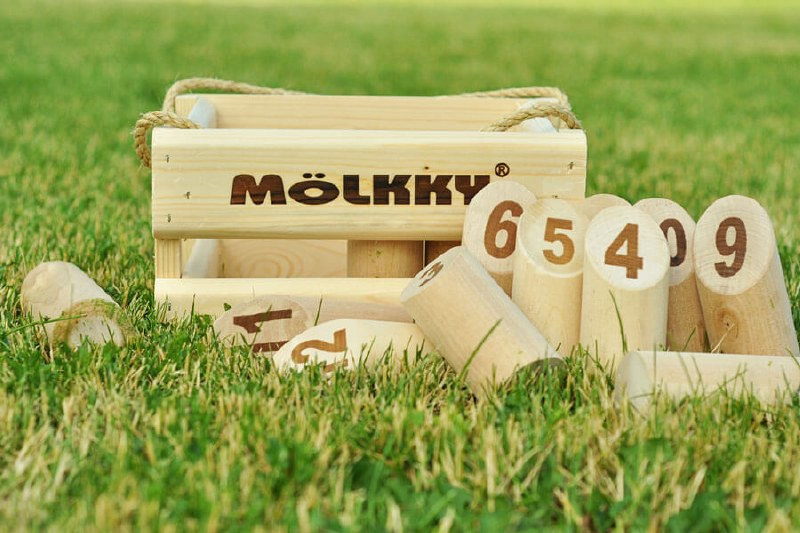 Molkky Outdoor Game - Tactic Games - The TreeHouse Toy Store ...