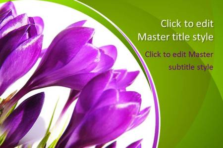 Flower shop near me flower powerpoint templates free download flower powerpoint templates free download the flowers are very beautiful here we provide a collections of various pictures of beautiful flowers toneelgroepblik Images