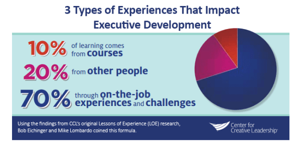 A Development Framework for Emerging and New Leaders ...