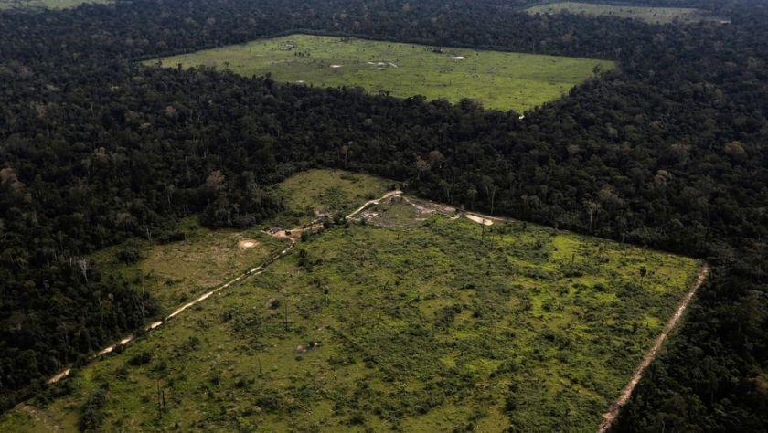 Regenwald für Ackerfläche: Hier in Brasiliens nördlichem Bundesstaat Pará