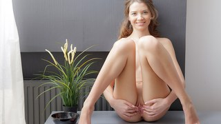 Tini makes her twat orgasmic in art porn video Preview Image