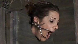 Tied up serf acquires lusty pleasuring her vagina Preview Image