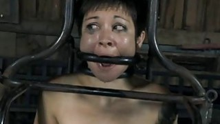 Clamped_up_gal_receives_her_fuck_holes_tortured Preview Image