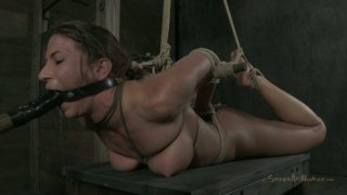 Private x hamster thamil sex - Dirty-minded hooker in hogtie bondage ariel x moans Preview Image