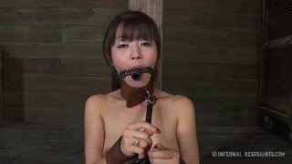 Extreme bondage time with brunette Asian chick Marica Hase Preview Image