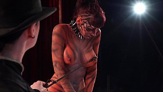 Bizarre BDSM show with a submissive tiger Preview Image