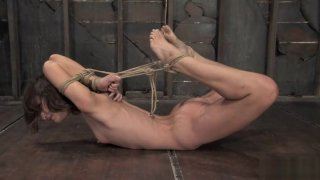 2007 Amber Rayne Hogtied and fucked Preview Image