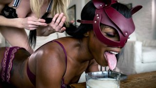 Blonde keeps Ebony BDSM Sex-Goddess Ana as Cat! Preview Image