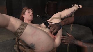 Bdsm Sub Toyed By Maledom And Femdom Preview Image