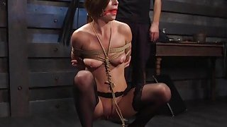 Brunette in ropes gets bdsm training Preview Image