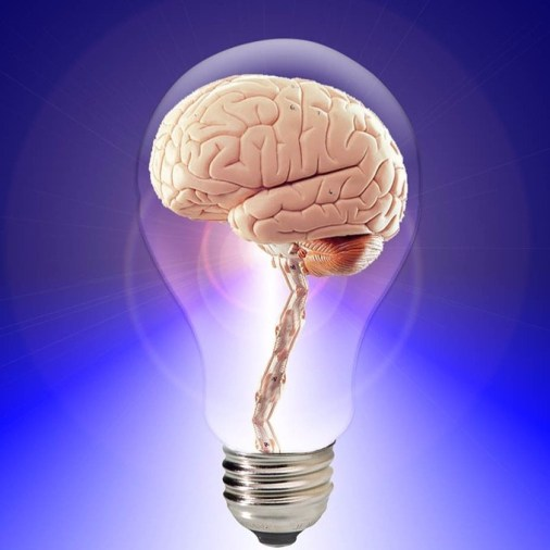 Brain Stimulants Top Ten Natural and Synthetic