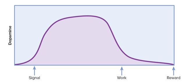 Figure67.1 - Sapolsky ve Mutluluğun Kimyası