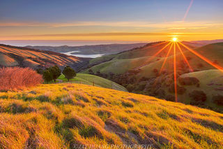 flickr/Labeled for reuse/Jay Huang Spring Sunrise