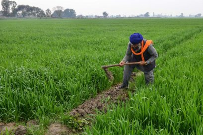 Image result for Agriculture declined by 1.33% in 2018—NBS