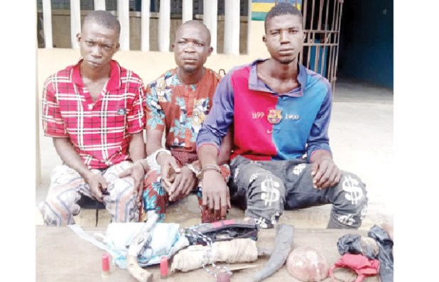 Three arrested as Ogun police, robbers clash - Punch Newspapers