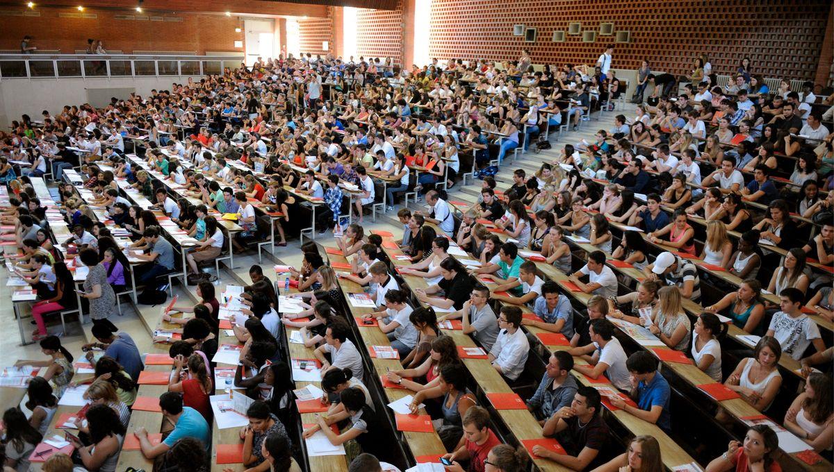 Sélection En Master à Luniversité Plus De 1000 étudiants