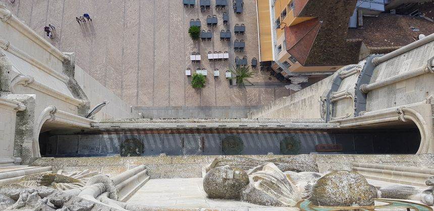 Des Pieges A Pigeons Sur La Cathedrale De Sens Suscitent L Emoi Chez Les Defenseurs Des Droits Des Animaux