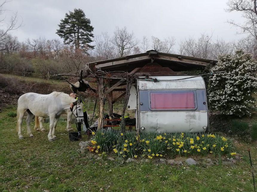 Kathleen et l'un des chevaux à côté d'une caravane où le couple va passer quelques jours
