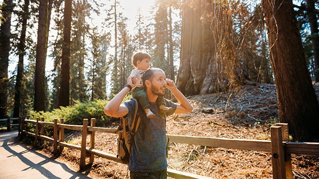 father with toddler on shoulders walking through a park