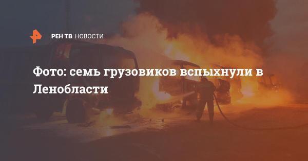 Фото: Семь грузовиков вспыхнули в Ленобласти | В России ...