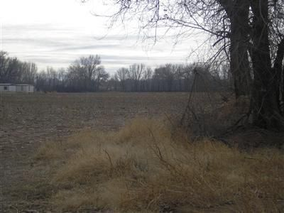 The possibilities are endless. 16.5 Acres of beautiful irrigated land in the valley and close to town. Buy all or part. City utilities are close and a subdivision split could be possible! Ask listing agent about terms and conditions for a REC....