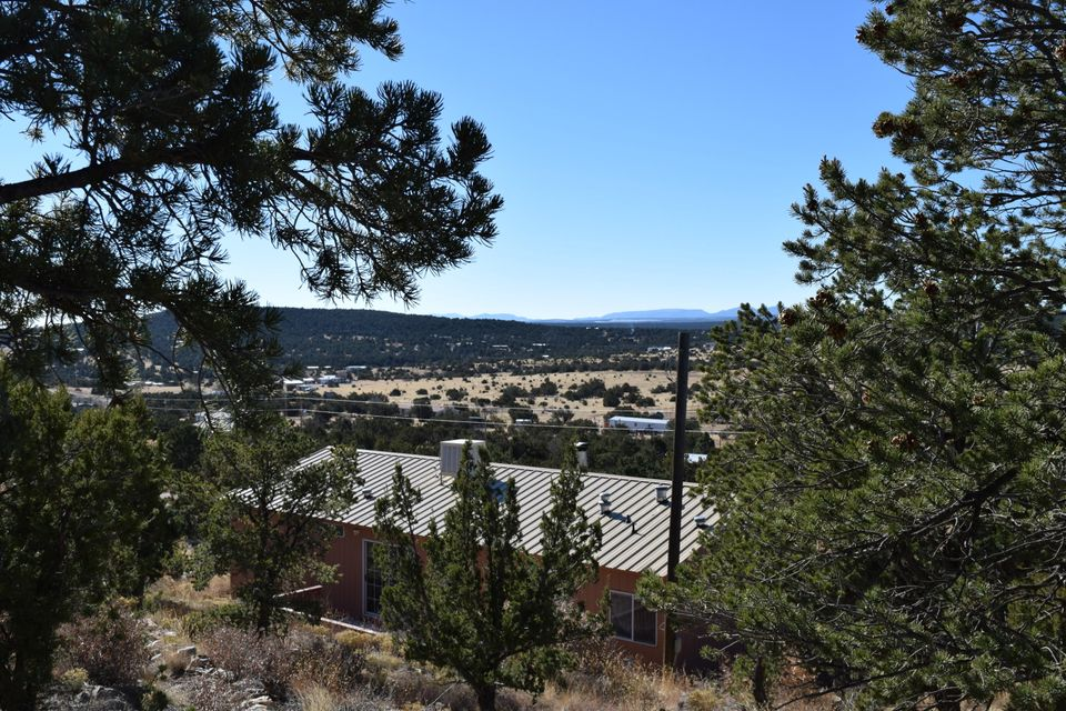 Sweet jewel on a quiet hillside with a view to tomorrow! Nicely painted interior, tile floors in the living areas, beautiful views off the front deck, privacy off the back deck. The lot slopes up with a flat area at the top that could accommodate animals. The lot is fenced on three sides.