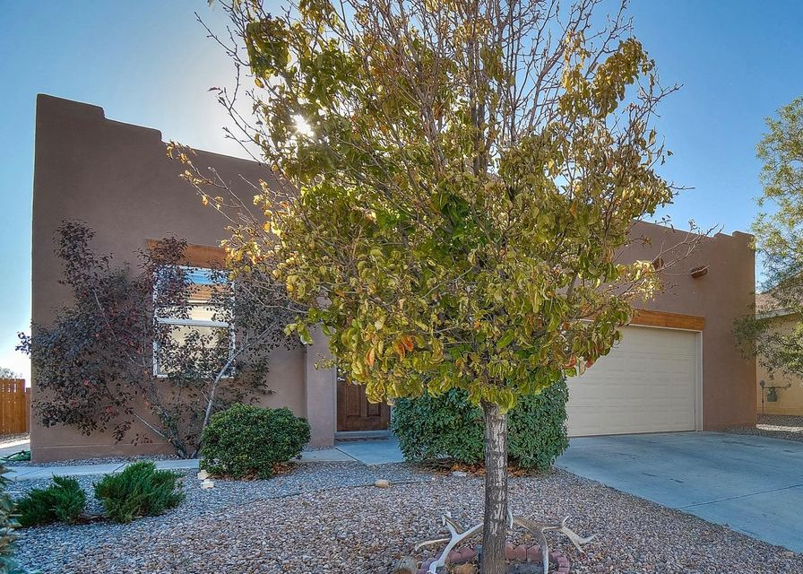 This exceptionally well-maintained and beautifully updated single story, 4 bedroom, 2 and 3/4 bath home in the desirable community of Cabezon won't last long! With it's inviting entryway, open and functional floor plan, and fireplaces throughout you will feel right at home when you enter. Upgraded throughout with oversized tile, laminate, newer carpet, stacked stone and freshly painted walls. Escape to the large master suite complete with it's own stunning Kiva fireplace, garden tub and separate shower, and huge walk-in closet. The backyard is primed for outdoor living with a gazebo and solar lit pathways. The garage is outfitted with optimal shelving for storage as well as a work-bench.