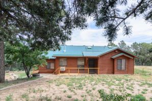 Welcome to the East Mountains! Its time to make your dreams come true with this great home away from the city. Theres nothing like being with family and friends surrounded by tall pines, pinon and juniper trees, while enjoying a backyard BBQ with a fire pit and soaking in the hot tub from your own private deck while watching a game or movie from your outdoor TV or be ready for a basketball game. Enjoy having brick floors in the living room and kitchen. Theres a heated bonus room that can be used as a game room, den or possible 4th bedroom the possibilities are endless. During the winter months cozy up to the new wood burning stove. Theres plenty of space on this .76 acre lot. This home won't be on the market very long make your move today!