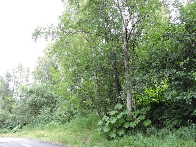 NHN L2 Amonson Road, Chugiak, AK 99567