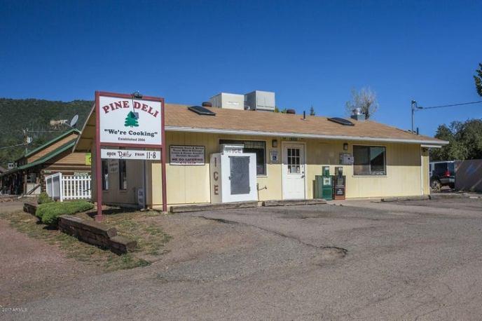 6240 W HARDSCRABBLE MESA Road, Pine, AZ 85544