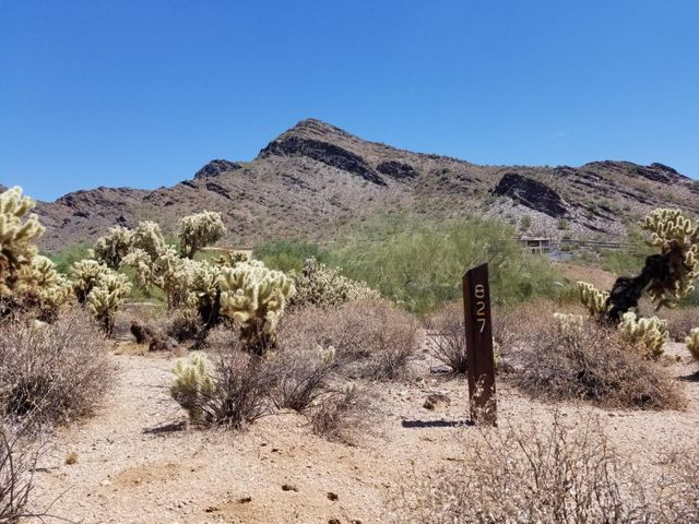 9820 E THOMPSON PEAK Parkway, 827, Scottsdale, AZ 85255