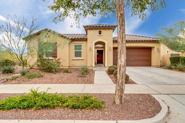 21098 W WYCLIFF Drive, Buckeye, AZ 85396