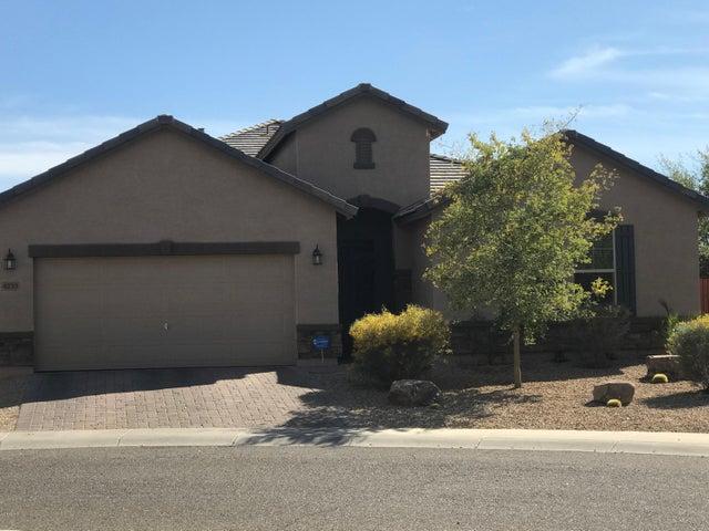4233 W BEAUTIFUL Lane, Laveen, AZ 85339