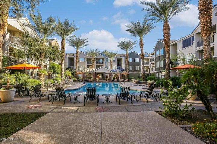 909 E Camelback Road, 3109, Phoenix, AZ 85014