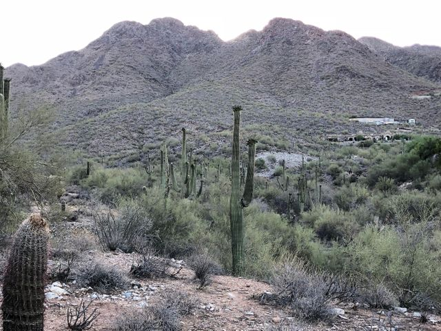 10871 E CANYON CROSS Way, 1961, Scottsdale, AZ 85255