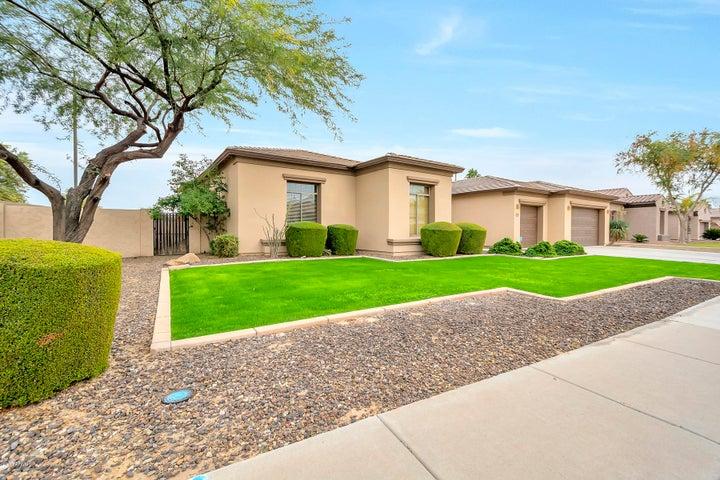 5319 S DRAGOON Drive, Chandler, AZ 85249
