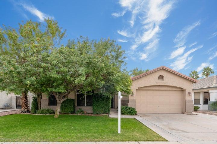 6545 W PIUTE Avenue, Glendale, AZ 85308