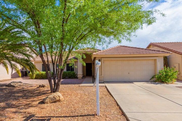 1237 E HARVARD Avenue, Gilbert, AZ 85234